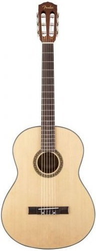 Fender FC 100