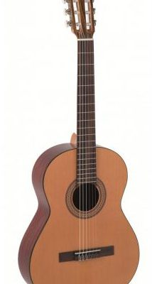 Alvaro Guitars No.20