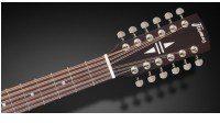 Framus FD 14 SV CE Vintage Transparent Satin Natural Tinted + EQ 12-String) gitara elektroakustyczna