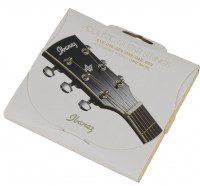 Ibanez ACS6C 80/20 Bronze Light struny do gitary akustycznej 012-046