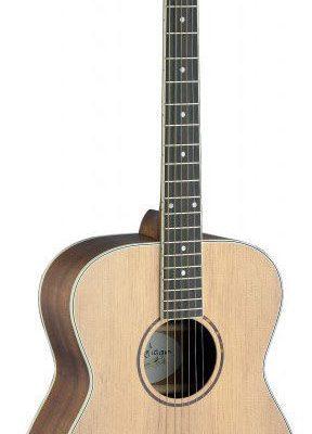 James Neligan ASY-A - gitara akustyczna