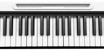 MIDIPLUS MIDIPLUS- EZ8 (klawiatura sterująca 88 klawiszy)