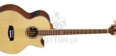 ORTEGA D2-4 Bas elektro-akustyczny ORTEGA 2559