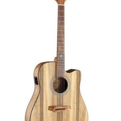 Randon Randon RGI-PW1CE gitara elektro-akustyczna