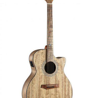 Randon Randon RGI-PW4CE gitara elektro-akustyczna