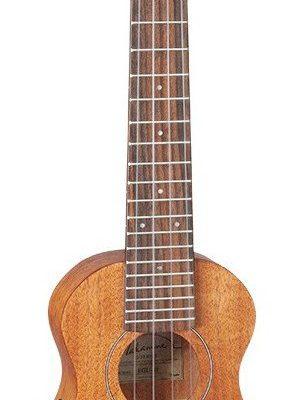 Takamine EGU-S1 - ukulele elektro-akustyczne
