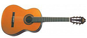 Washburn C 40 (N), gitara klasyczna C 40 (N)