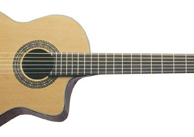 Washburn C 64 SCE (N) - gitara klasyczna