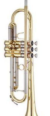 Xo Brass Xo Brass XO1602LR4