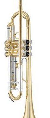 Xo Brass Xo Brass XO1602LS4